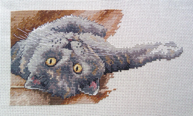 Вышивка крестиком кот макс 96