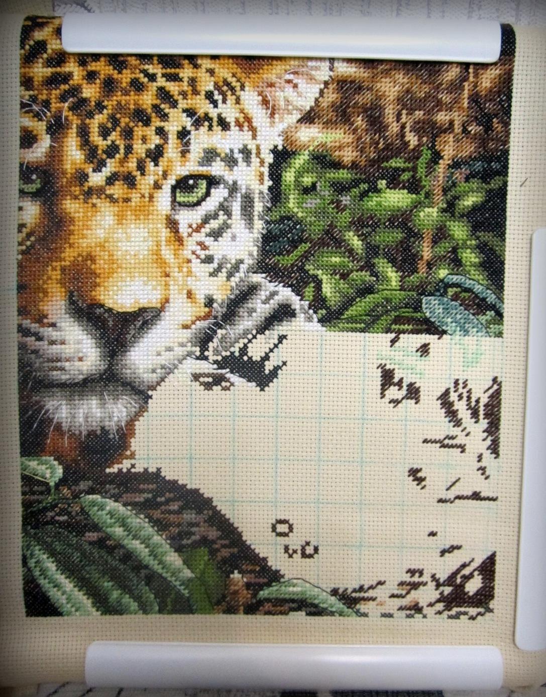 leopard in repose схема