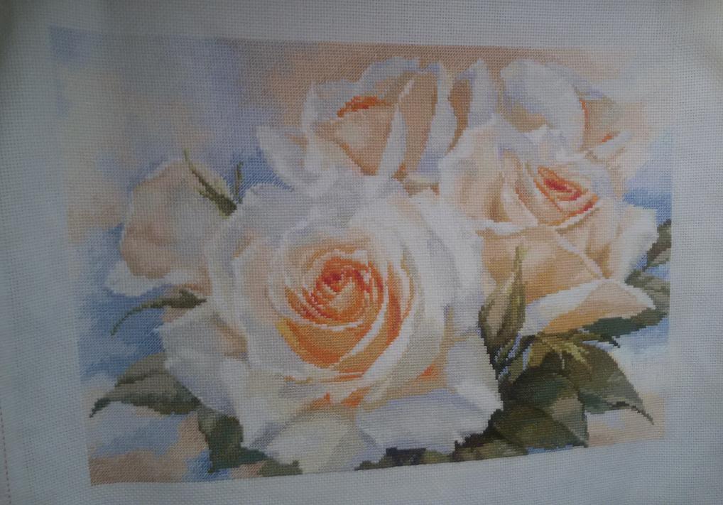 Схема вышивки алиса белые розы 56