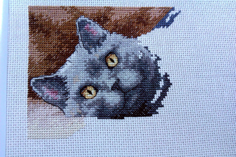Вышивка крестиком кот макс 38