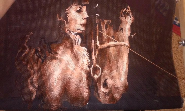 Вышивка амазонка от риолис 10