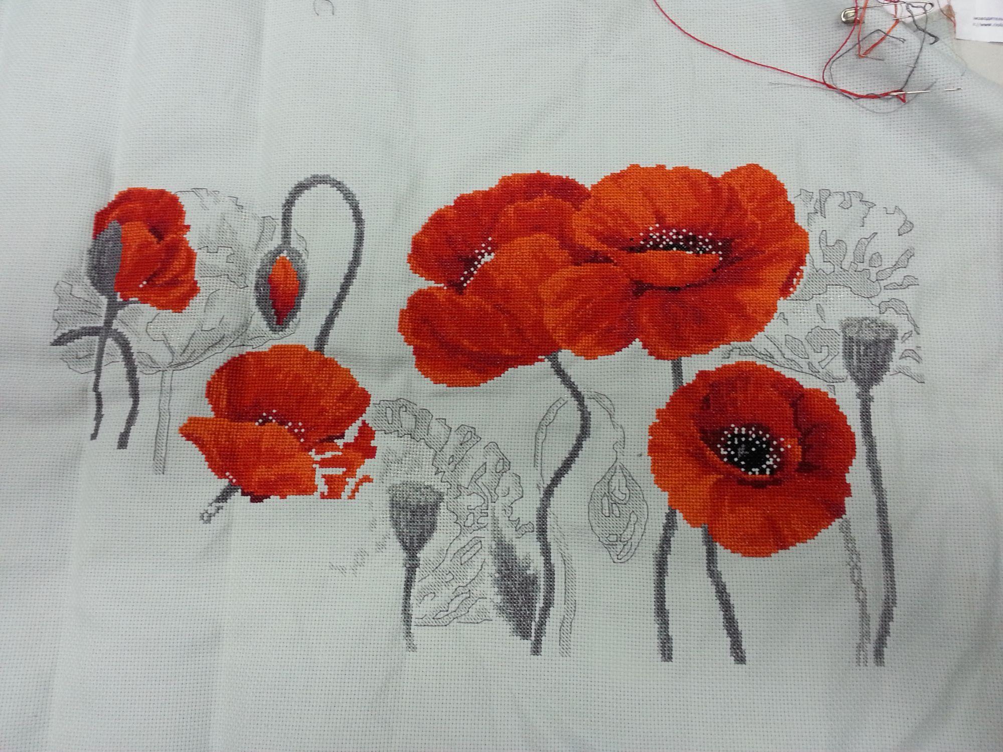 Вышивка маки риолис