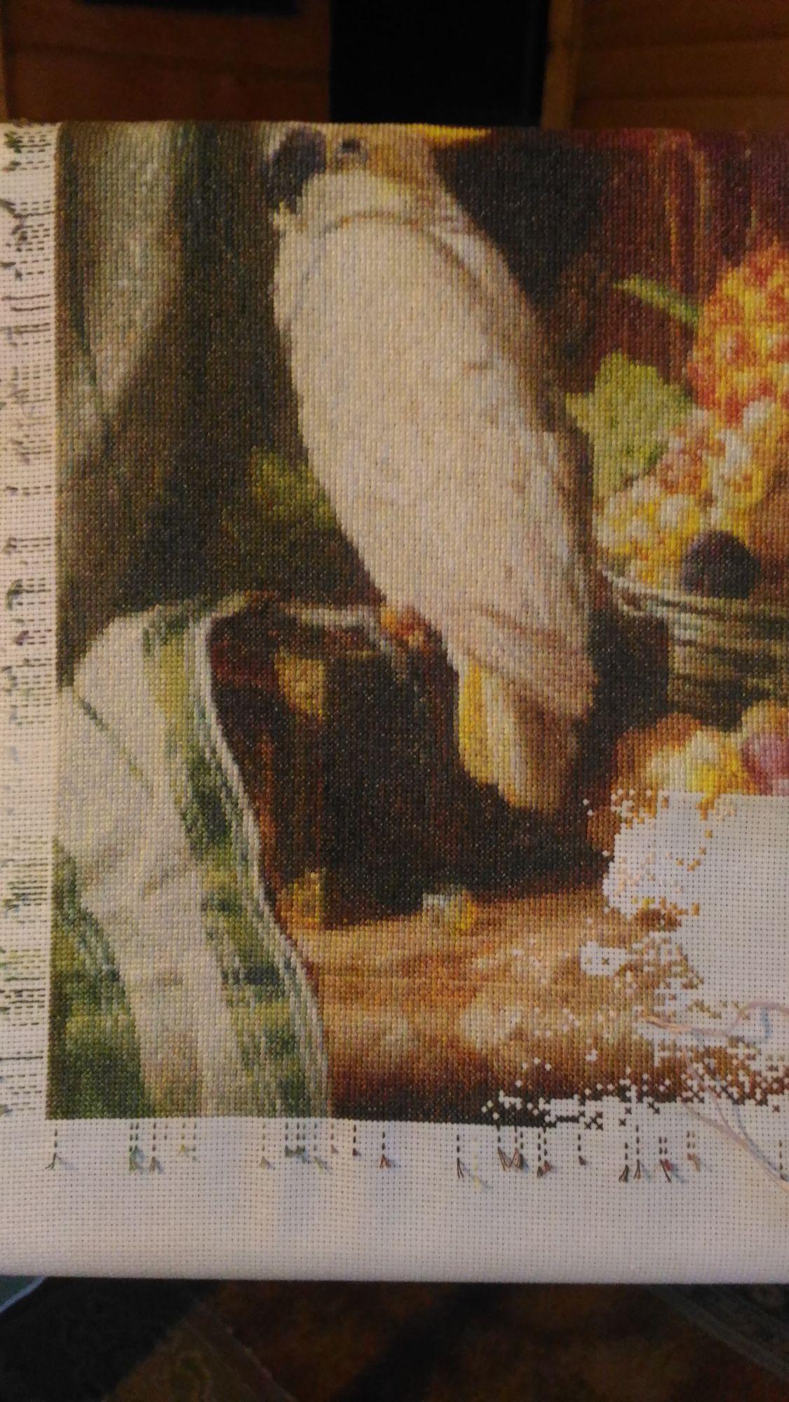 Вышивка от голден кейт 233